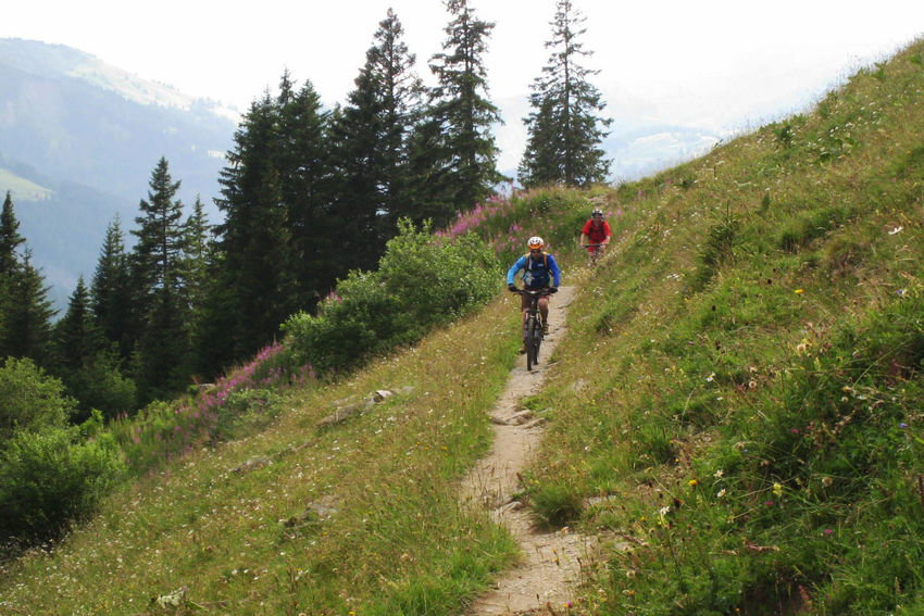 Single Trail, Gstaad